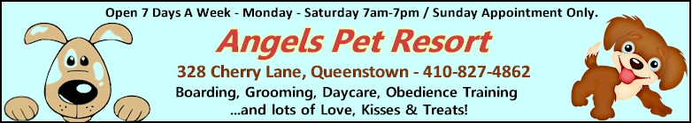 Angels Pet Resort